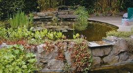Jardimpact - Schaerbeek - Parcs et jardins, architecte paysagiste