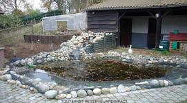 Jardimpact - Pièces d'eau